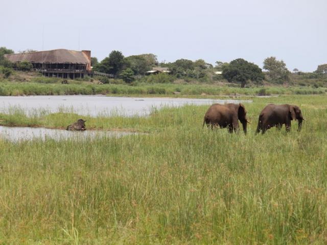 Lower Sabie Restcamp, Kruger National Park