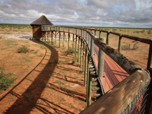 Olifantsrus Waterhole, Etosha, Namibia