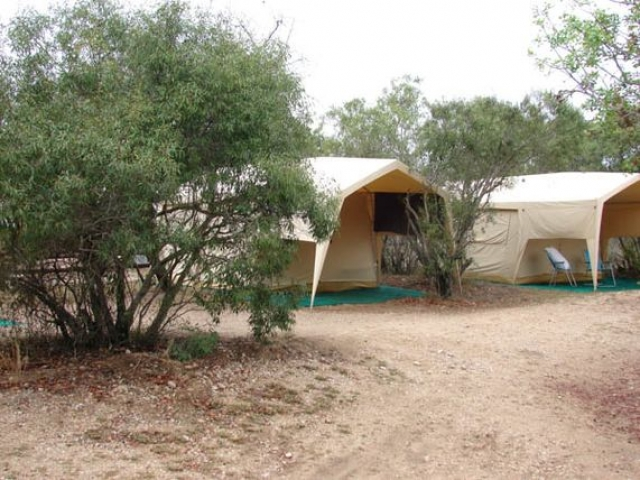 Camping under canvas Kruger National Park