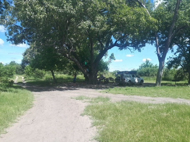 Lovely, shady campsites at Third Bridge Campsite