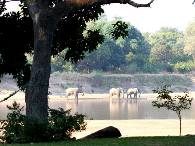 Croc Valley Camp, views across the Luangwa River, Malawi and Zambia