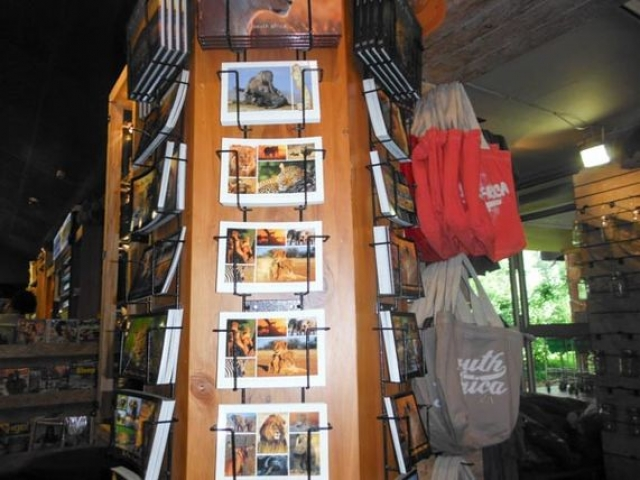 Another photo by Cadan of the Kruger National Parks Shop