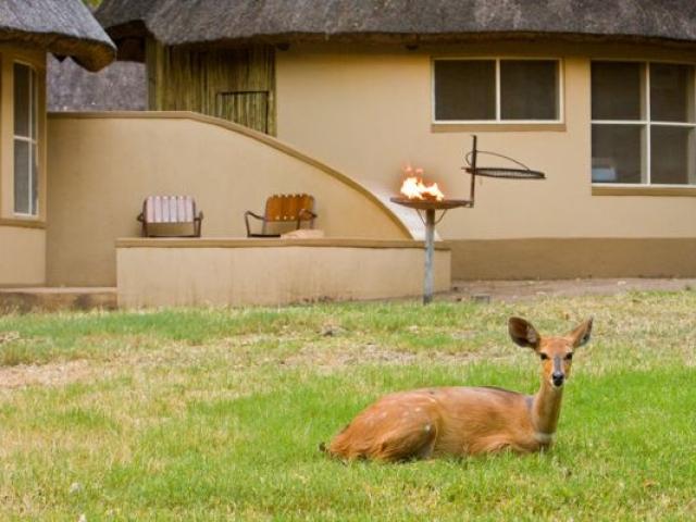 Letaba Bungalows, Kruger National Park