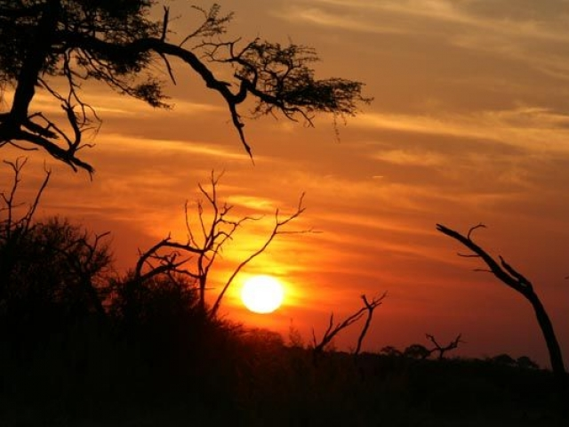 Savuti sunset