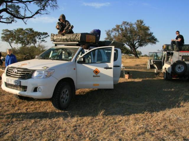 Enjoying a morning break in  Moremi Game Reserve, Botswana