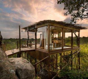 Sabi Sands Tree house, Kruger National Park