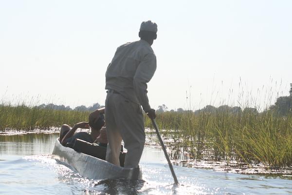 Mekoro, Okavango Delta