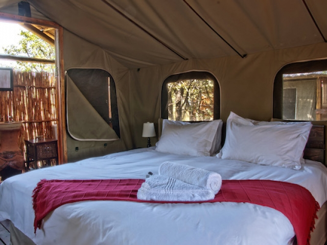 Shindzela Tented Safari Camp, Safari Tent