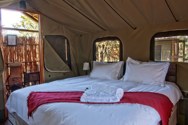 Shindezela luxury safari lodge