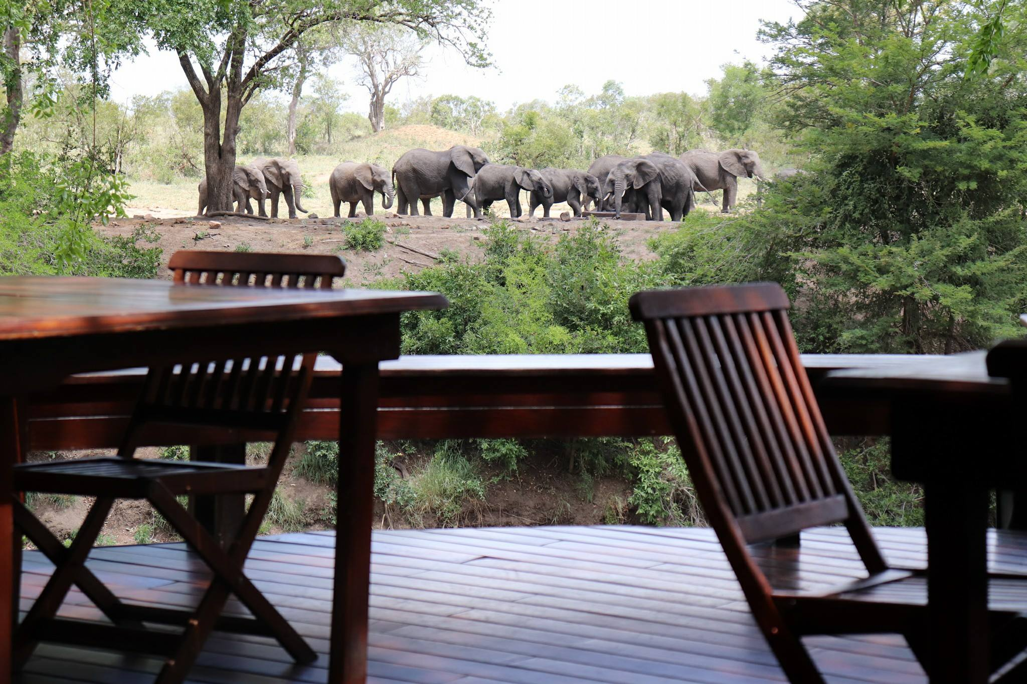 Luxury Kruger, South Africa