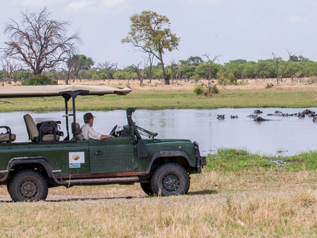 Safari in the Okavango Delta