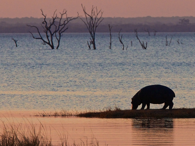 Perfect sunsets at Hippo Bay, Kafue National Park