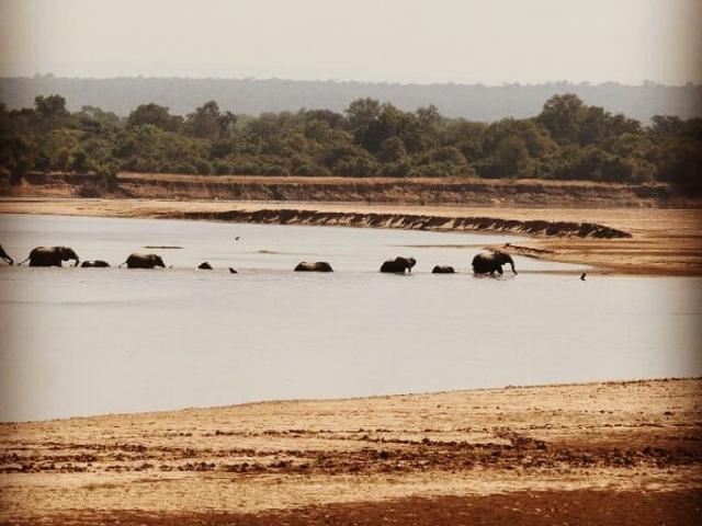 Wildlife Camp, Zambia self drive