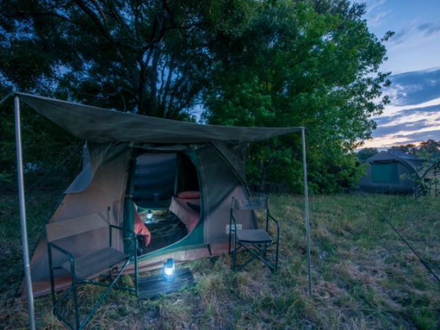 Essential Botswana, fall asleep to the sounds of Africa