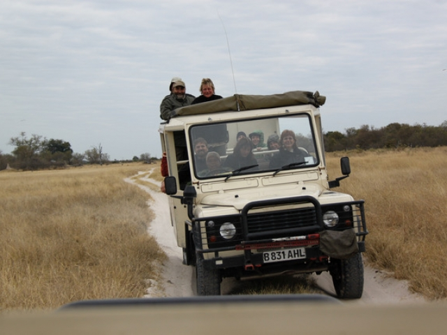 Essential Botswana, early morning game drive in Moremi