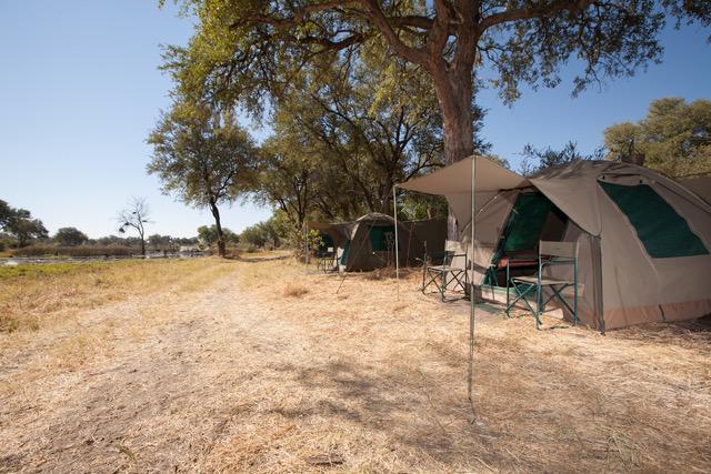 Essential Botswana, campsite in Moremi