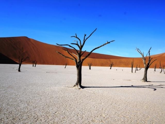 Deadvlei, Namib-Naukluft National Park