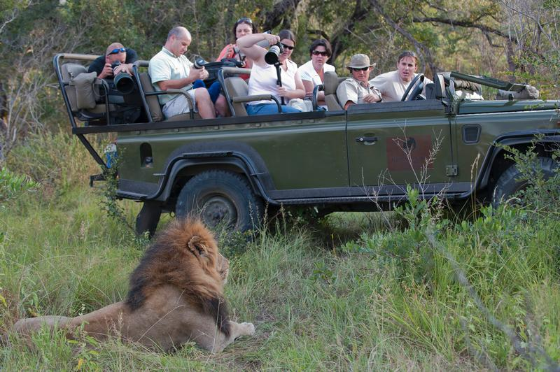 Family Holiday South Africa - Elephant Plains Safari Lodge (Upgrade) - game drive