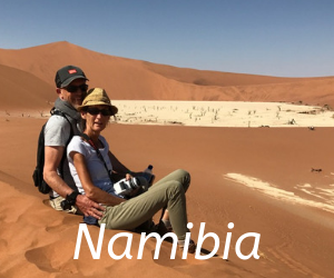 Travel itineraries southern Africa -Namibia, elephant
