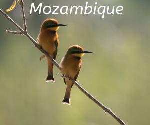 Mozambqiue itineraries