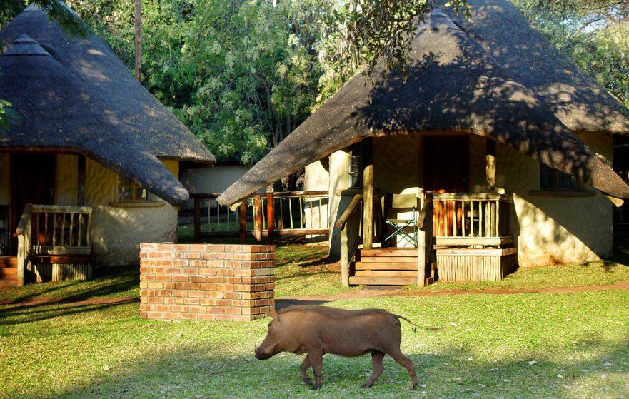 Family Self-Drive Botswana - Chobe Safari Lodge, Chalets (Standard)