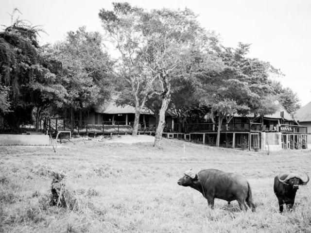 Umkumbe Safari Lodge, right on the Sabi River