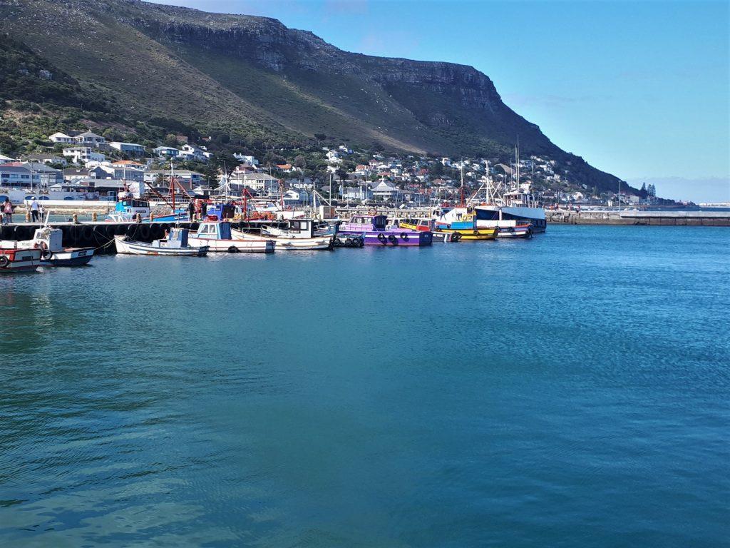 Kalk bay harbour - Cape Point self drive
