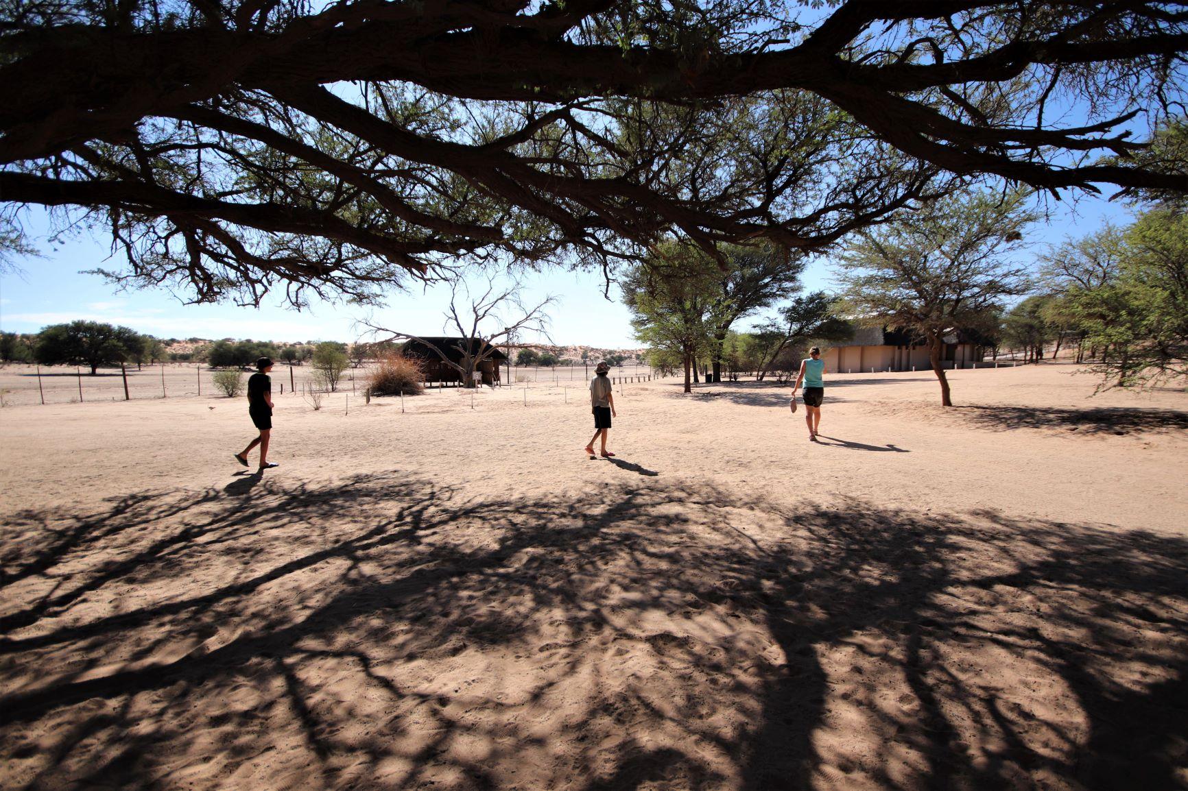 Camping in the Kgalagadi