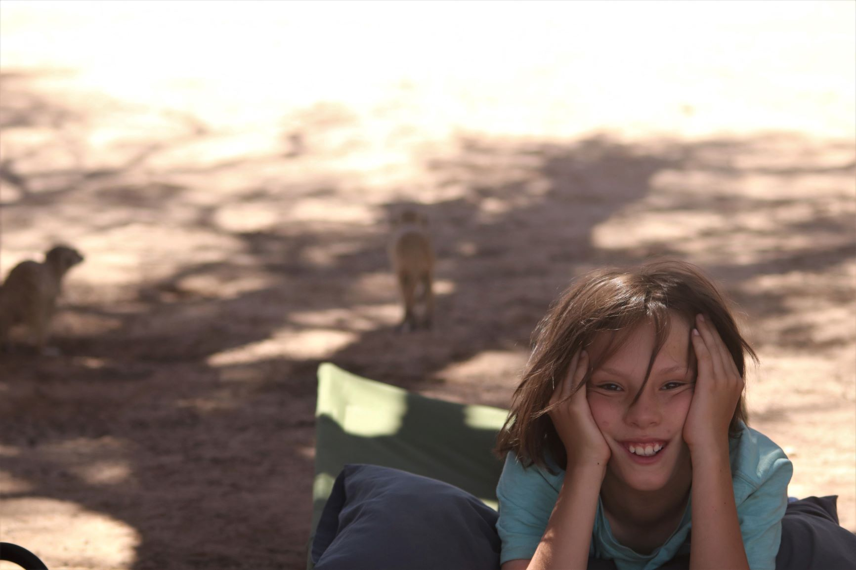 Camping in the Kgalagadi Transfrontier Park