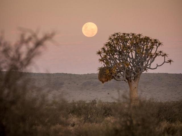 Namibia Wonders - Sunset