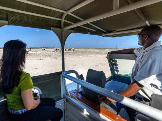 Etosha Safari Camp, Etosha, Namibia family holiday, guided game drive