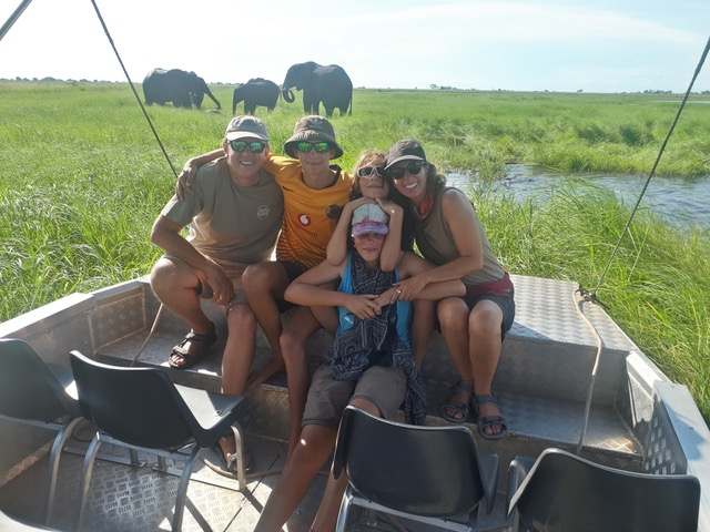 Buffalo on the Chobe Rverfront
