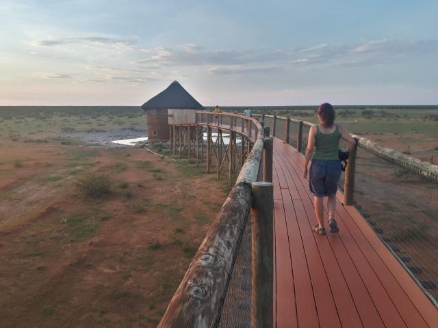 Complete Namibia - Olifantsrus Hide, Etosha