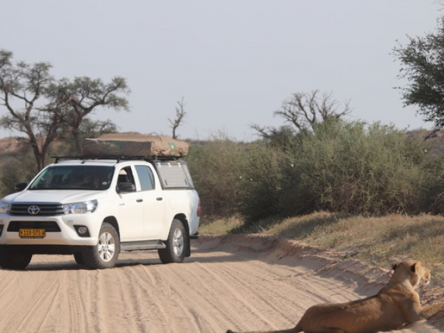 Fully equipped camping 4x4 vehicle - game viewing, Kgalagadi Transfrontier Park, South Africa / Botswana.