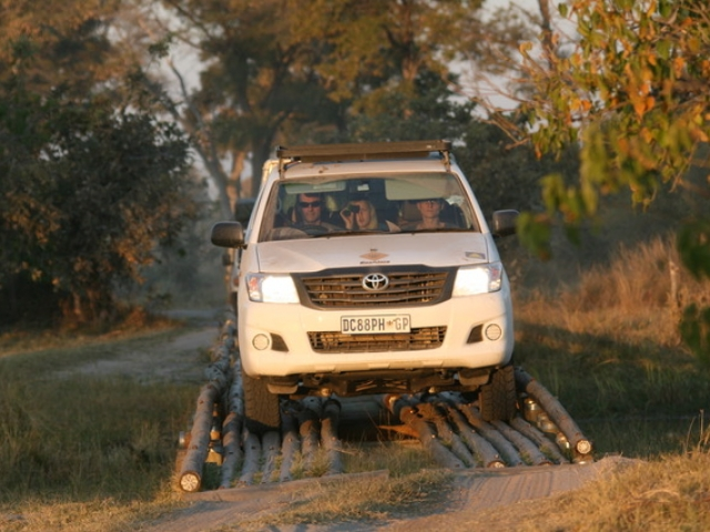 A 4x4 vehicle is a must to explore the game reserves (Moremi, Savute, Chobe and more) of Botswana.