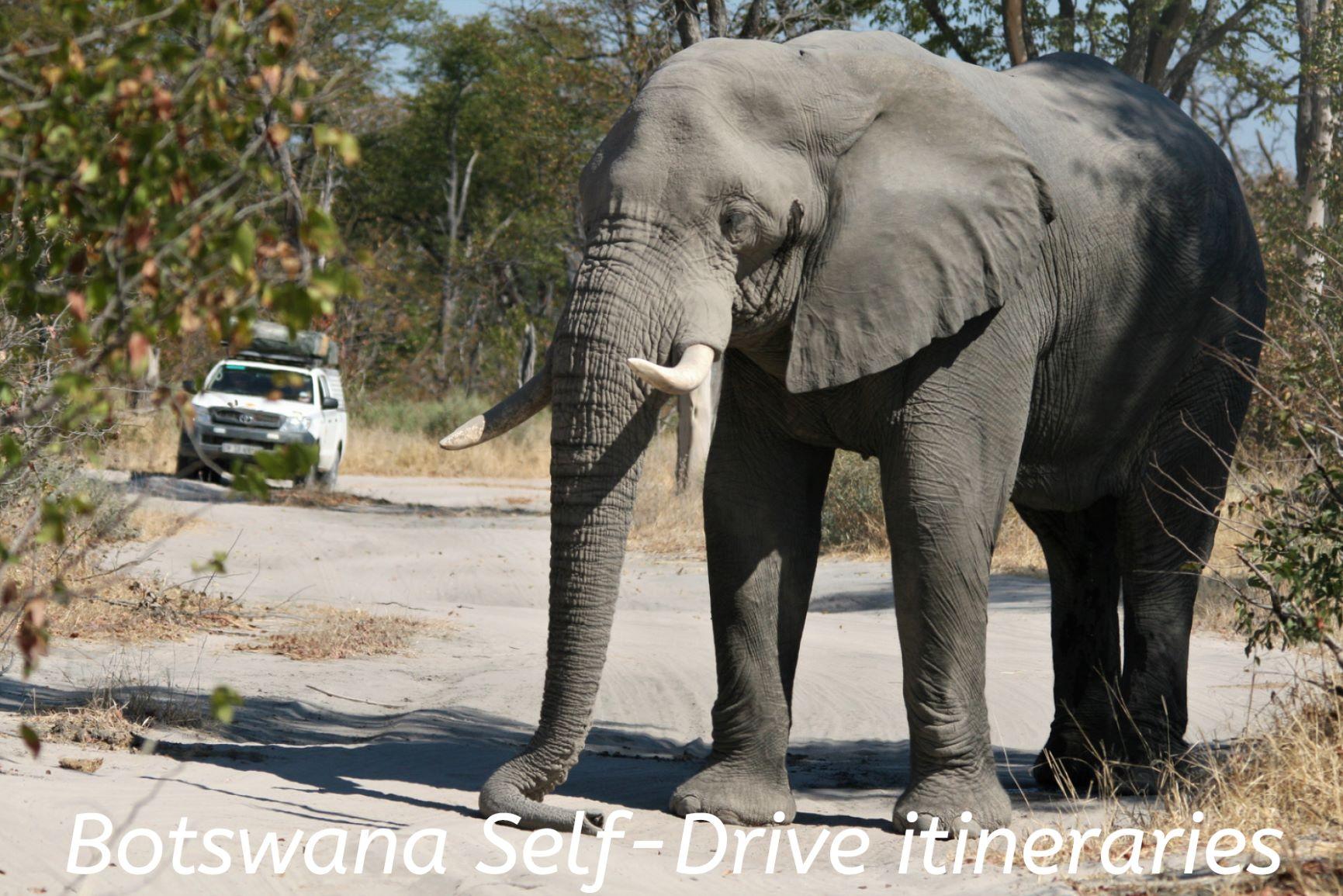 Botswana Self Drive itineraries