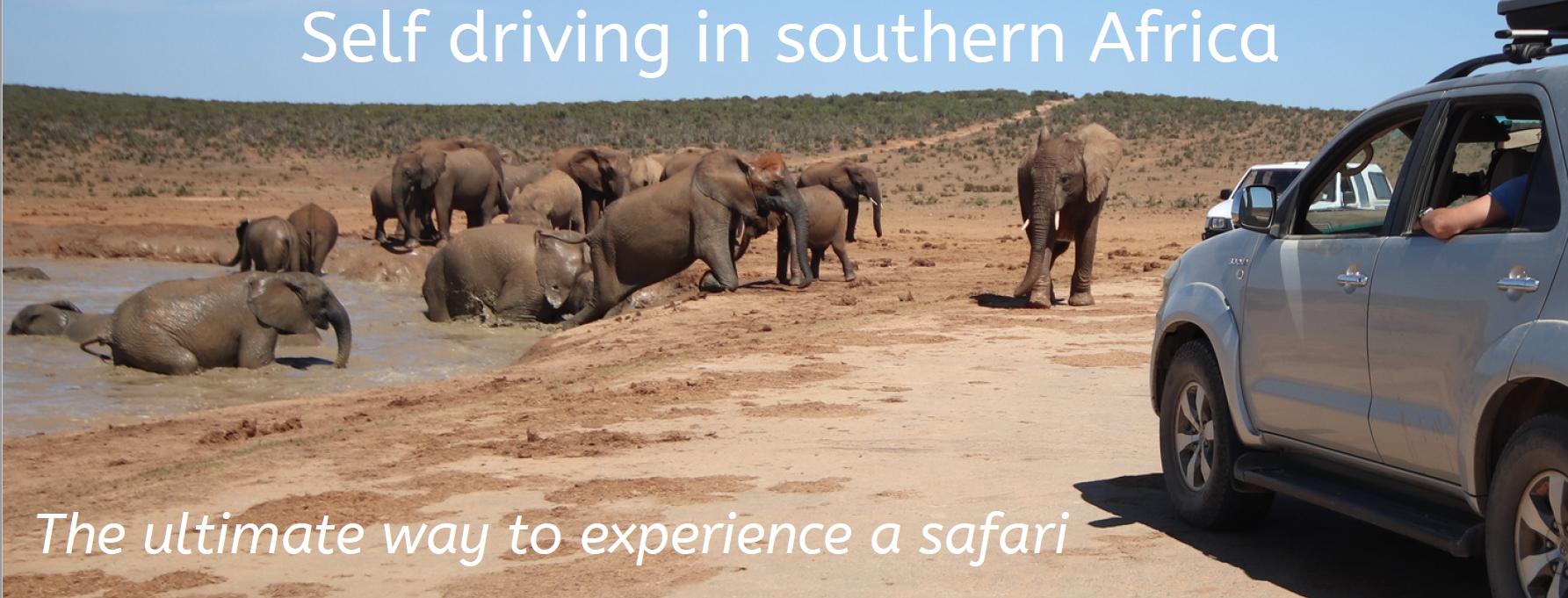 Self drive safari southern Africa