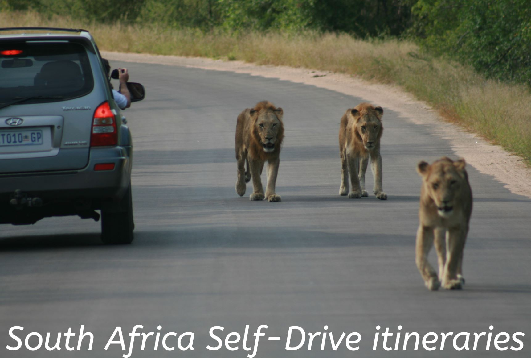 South Africa Self-Drive itineraries