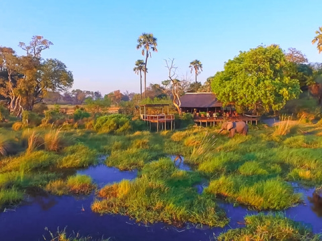 Delta Camp, Okavango Delta Family Tour