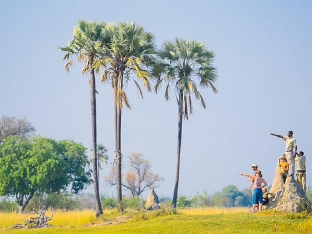 Delta Camp, Okavango Delta Family Tour, dedicated guides
