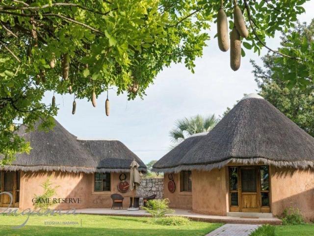 Onguma Bush Camp, Etosha, Namibia family holiday, guest chalets