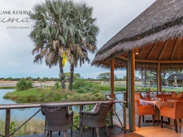 Onguma Bush Camp, Etosha, Namibia family holiday, terrace restaurant