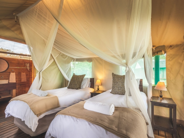Shindzela Tented Camp, Kruger, Safari tent, Kruger luxury safaris
