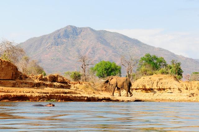 Visit Zambia, Lower Zambezi