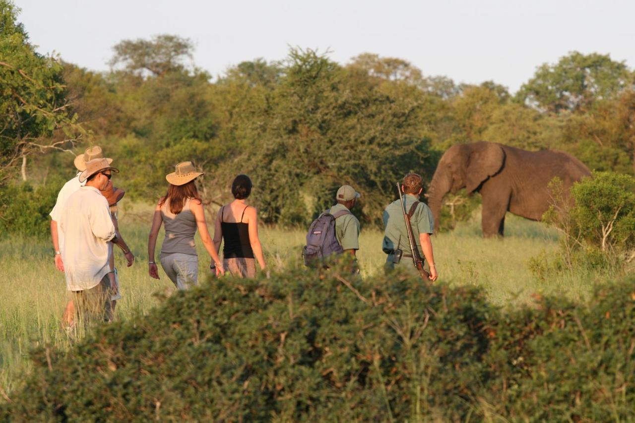 Kruger On Foot