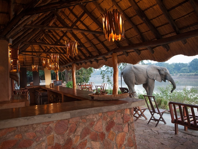 Track & Trail River Camp, South Luangwa, Bar overlooking the Luangwa River