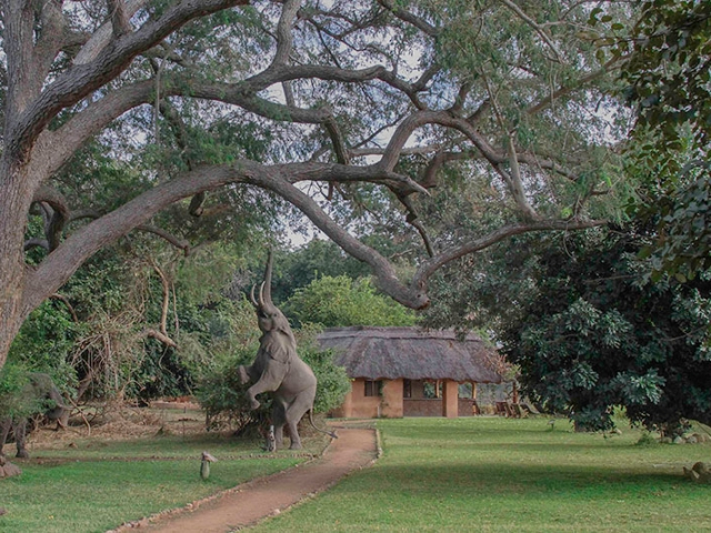 Track & Trail River Camp, South Luangwa