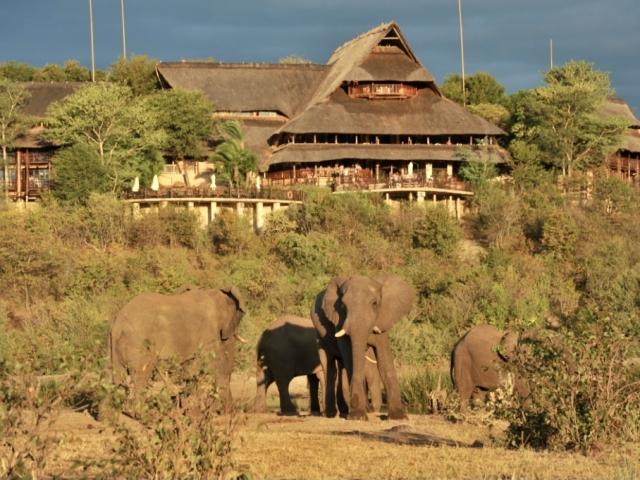 Victoria Falls Safari Lodge, Victoria Falls (Upgrade)